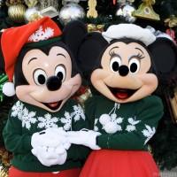 Holiday Fun at Disneyland