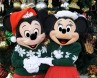 Mickey and Minnie Holiday