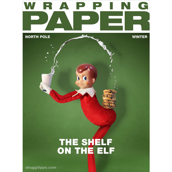 The Shelf of the Elf via  @shuggilippo